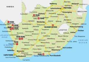 Image of a map of South Africa showing where each hotel is located